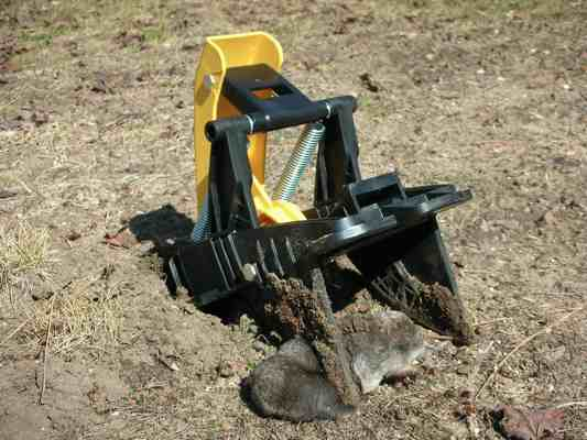 Trapping moles removal and prevention if it only takes a simple trap to catch a mole why is yard mole removal so difficult trap selection and placement makes all the difference solutioingenieria Image collections